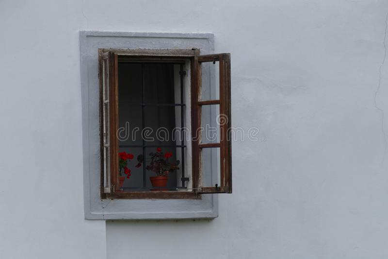 Ventana del vintage con el Pelargonium rojo imagen de archivo libre de regalías