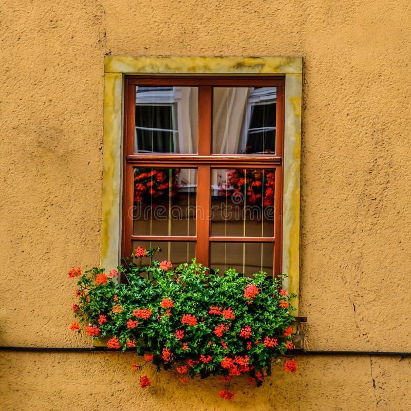 Ventana en Jelenia Gora imagen de archivo libre de regalías