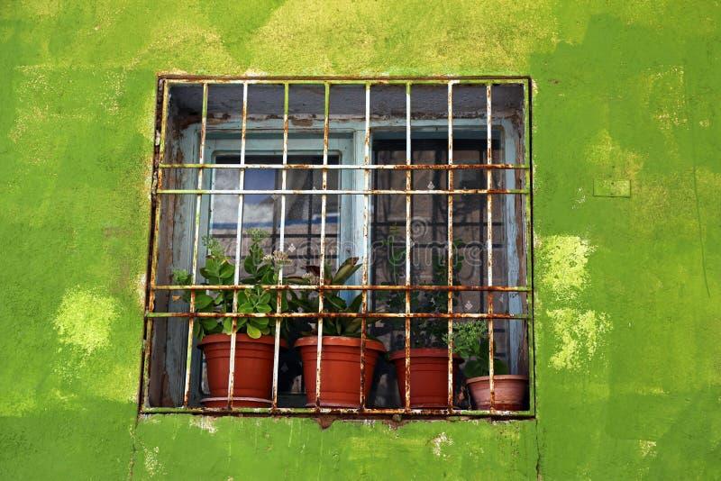 Ventana enmarcada por una pared verde fotografía de archivo libre de regalías