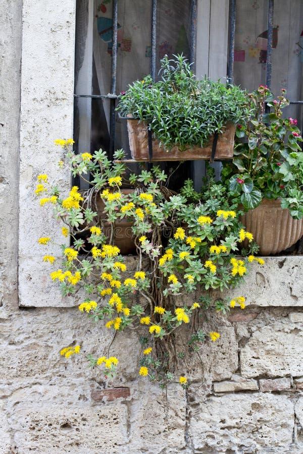 Ventana italiana adornada con las flores imagenes de archivo