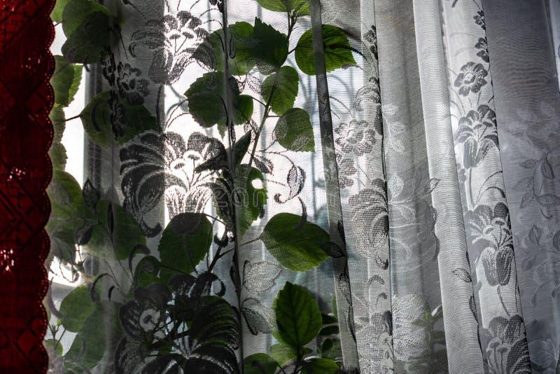 Ventana ordinaria casera con Tulle blanca transparente y las cortinas rojas del satén Día brillante soleado, invierno afuera En l imagen de archivo