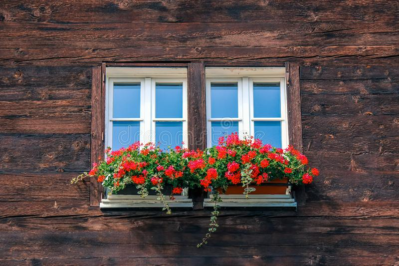 Ventana típica del chalet alpino de madera Choza de madera, flores rojas en ventana Arquitectura alpina tradicional montan@as Cho imágenes de archivo libres de regalías