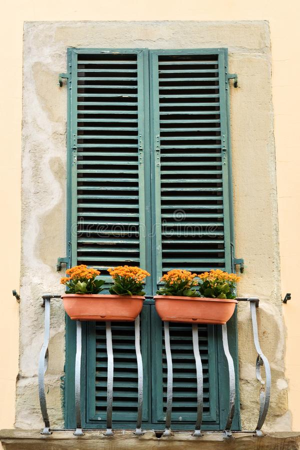 Ventana tradicional italiana vieja con las flores pisa Italia fotos de archivo