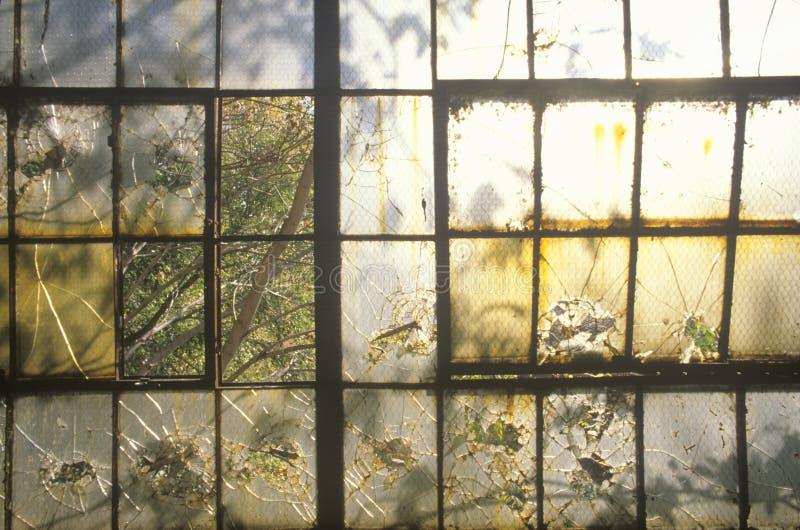 Ventanas quebradas en la fábrica abandonada, St. Louis del este, Missouri imagen de archivo libre de regalías