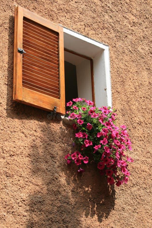 Ventanas y flores italianas imagen de archivo libre de regalías