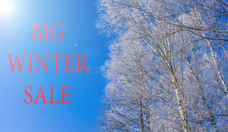 VENTE d'inscription sur une photo d'hiver La publicité des escomptes photographie stock libre de droits