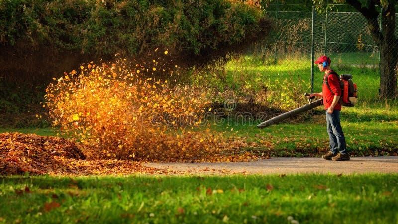 Ventilador de folha resistente na ação imagem de stock