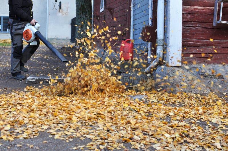Ventilador de hoja en otoño foto de archivo