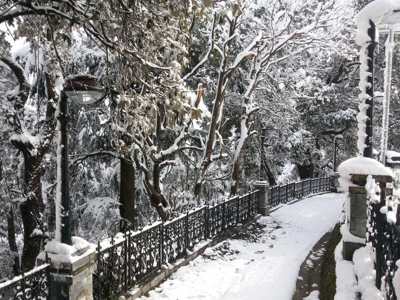 Ventiladores de neve imagens de stock