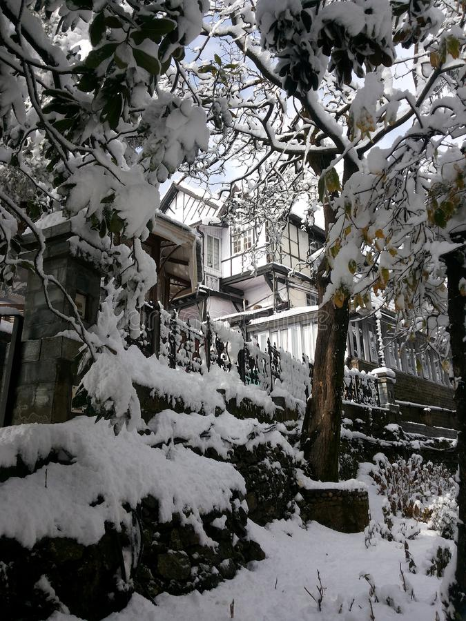 Ventiladores de neve fotos de stock royalty free