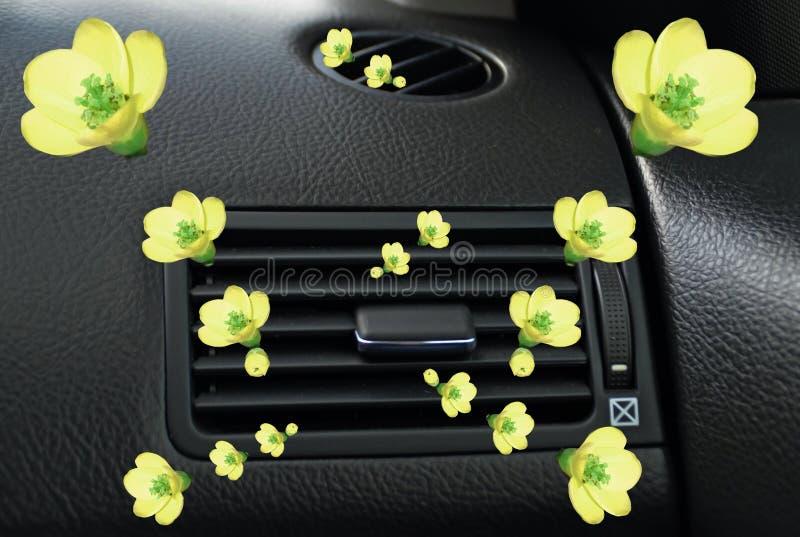 Ventilatore giallo di aero-condizione dei fiori dell'aroma della bevanda rinfrescante dell'automobile immagine stock