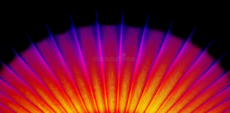 Ventilatore orientale al neon fotografie stock