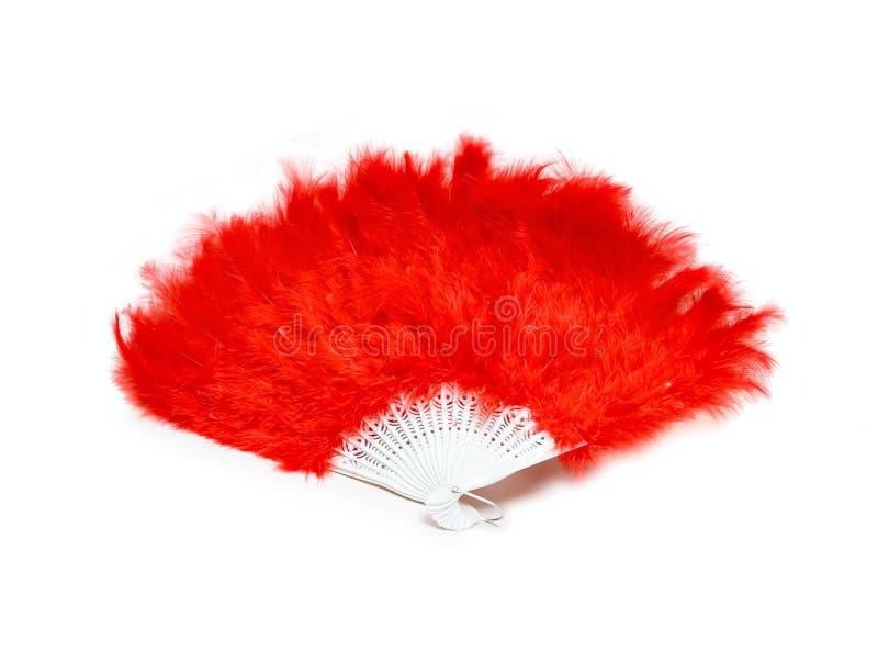 Ventilatore rosso dalla piuma immagine stock libera da diritti