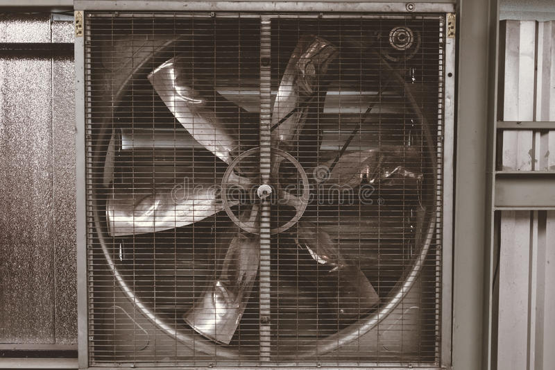 Ventilatori il grande fotografia stock libera da diritti