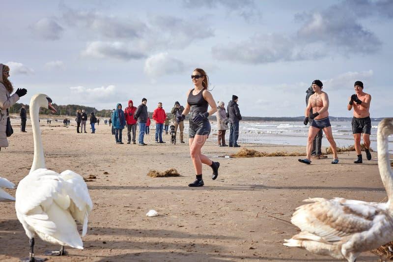 Ventilators die van die de winter zwemmen aan opwarming op het strand in werking worden gesteld royalty-vrije stock fotografie