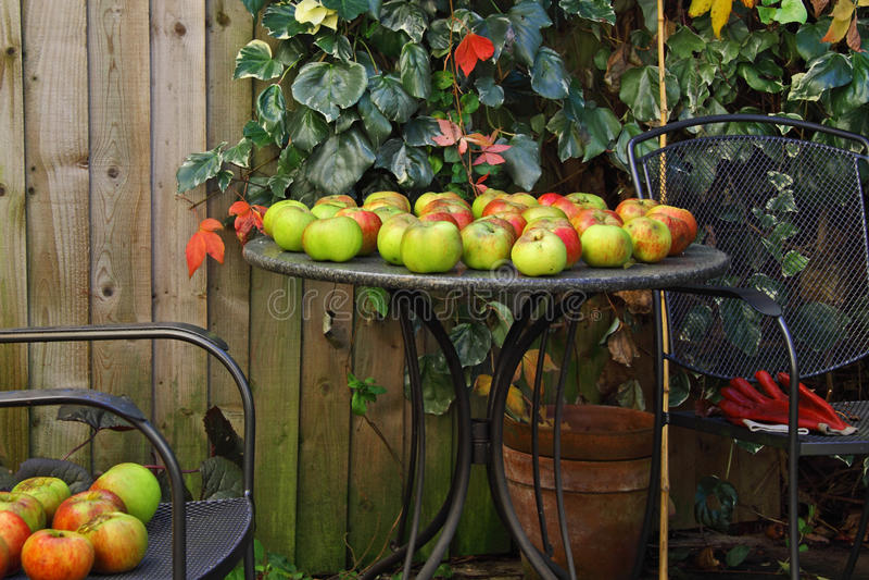 Ventis de jardin d'automne photos libres de droits