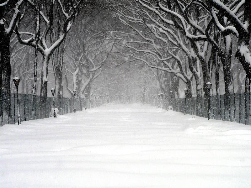 Ventisca 03 de Central Park imágenes de archivo libres de regalías