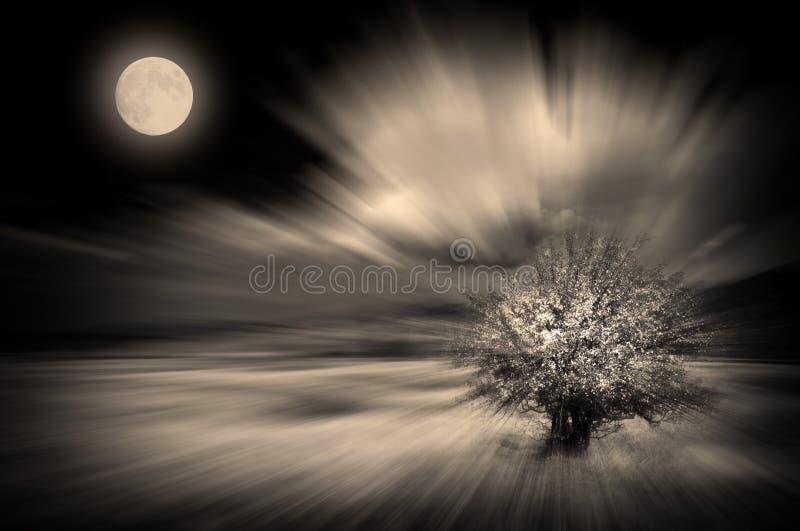 Vento da lua ilustração royalty free