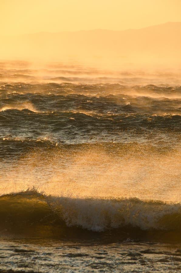 Vento di tempesta fotografia stock libera da diritti