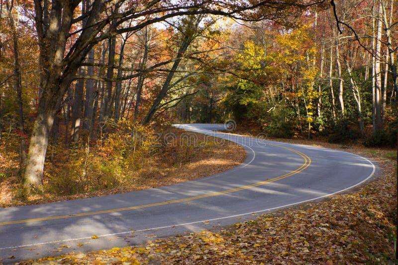 Vents de route de montagne par la forêt sunlit d'automne. image libre de droits