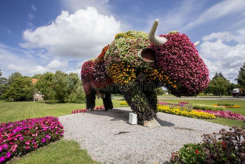 Ventspils miasta symbol - krowa zdjęcie royalty free