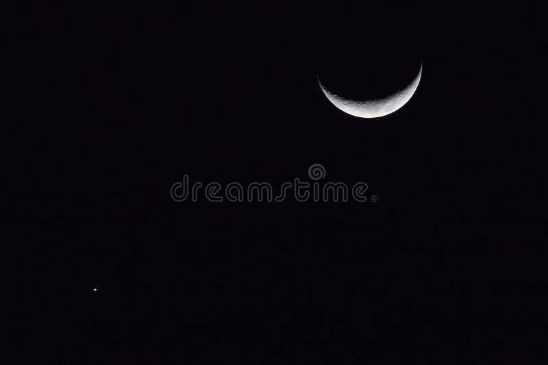 Venus-Bindegliedmond lizenzfreies stockfoto