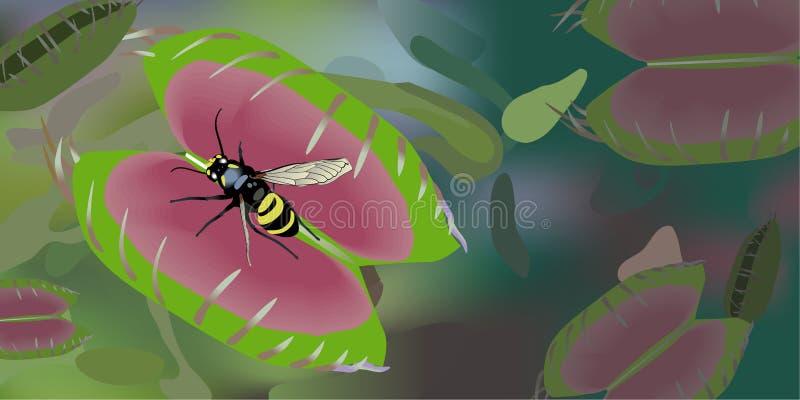 Venus Flytrap vector illustration