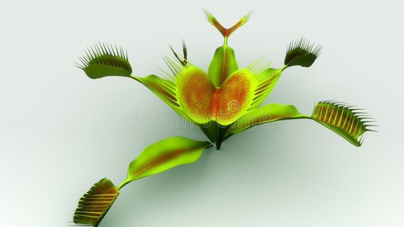 Venus flytrap stock illustration. Illustration of catch - 84226309