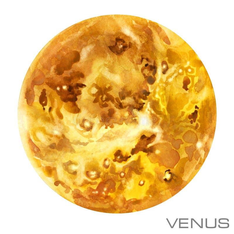 venus Fond d'aquarelle de Vénus illustration libre de droits
