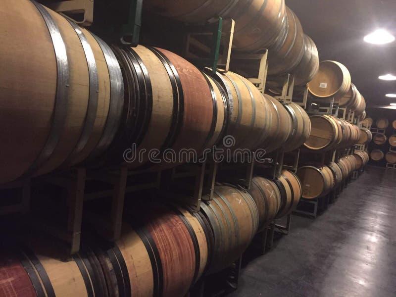 Venyard de la Californie de pays de vin images libres de droits