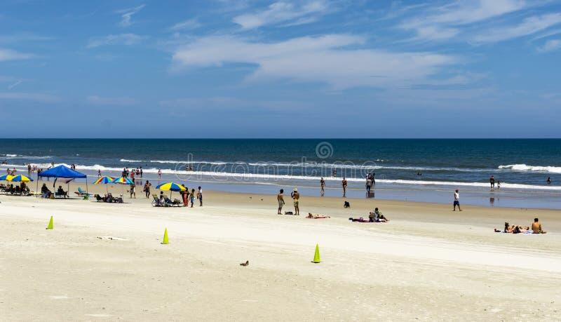 verão de Florida fotos de stock royalty free