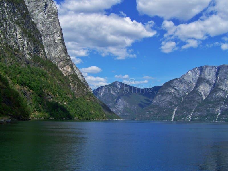 verão de Noruega da natureza Água, fiorde da floresta em um dia ensolarado imagem de stock royalty free