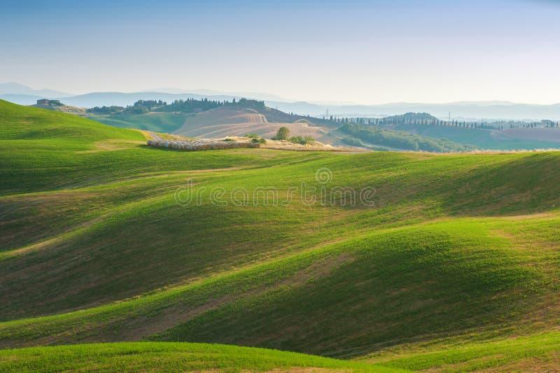 verão de Tuscan nos campos e vista bonita com sol imagem de stock royalty free