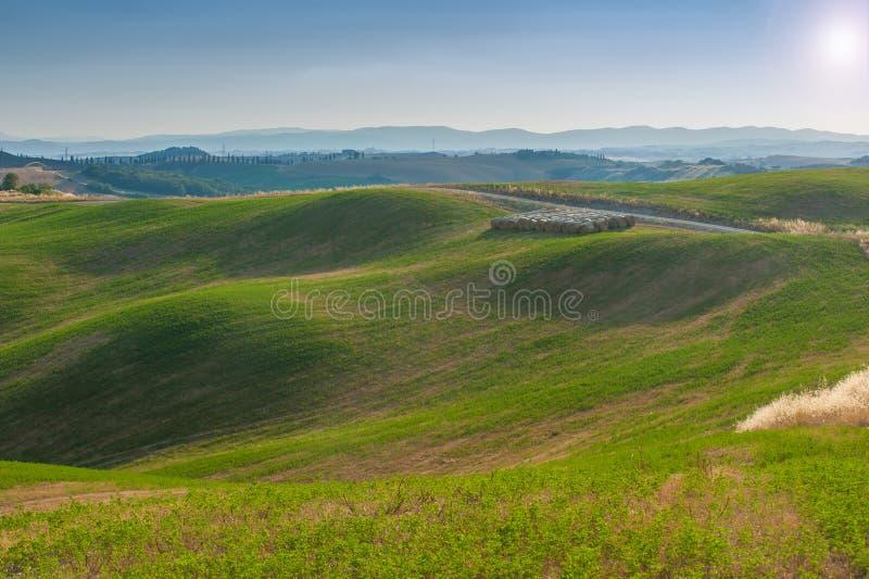 verão de Tuscan nos campos e vista bonita com sol imagens de stock royalty free