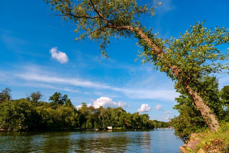 verão do lago NY greenwood fotografia de stock royalty free