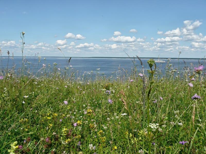 Verão em Volga fotografia de stock