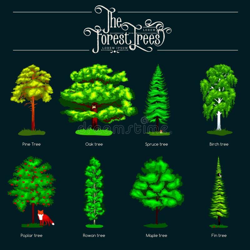 verão Forest Tree verde no fundo escuro Árvores ajustadas do vetor dos desenhos animados no parque exterior Árvores exteriores no ilustração stock