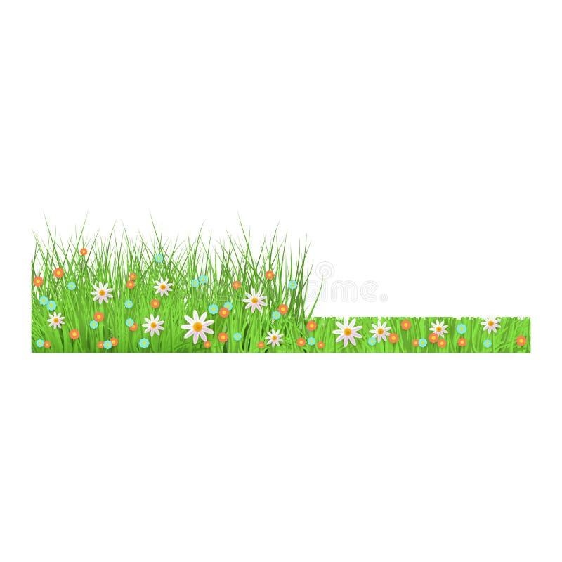 verão, grama verde luxúria floral da mola e beira do gramado antes e depois da sega ilustração royalty free