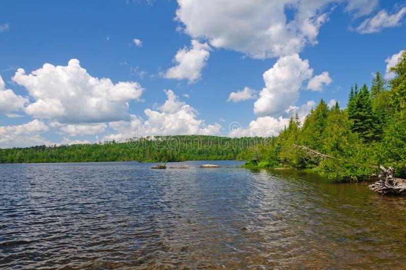Verão no país da canoa fotos de stock royalty free