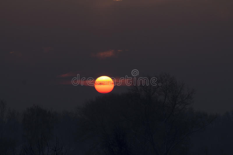 verão que nivela o sol vermelho grande imagens de stock