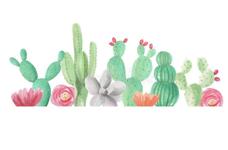 verão verde da mola do casamento do quadro das plantas carnudas dos cactos do cacto da beira da aquarela ilustração do vetor