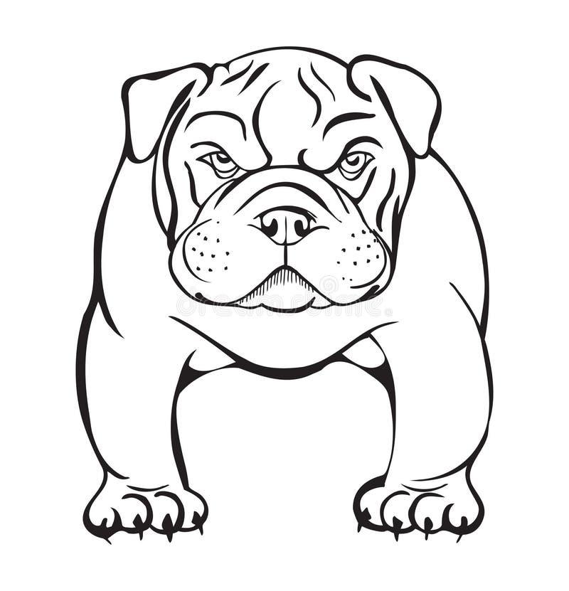 Verärgerte Bulldogge lizenzfreie abbildung