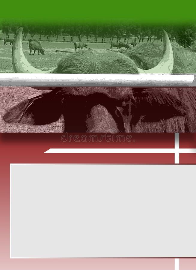 Verärgerter Büffel Bucheinband lizenzfreie abbildung
