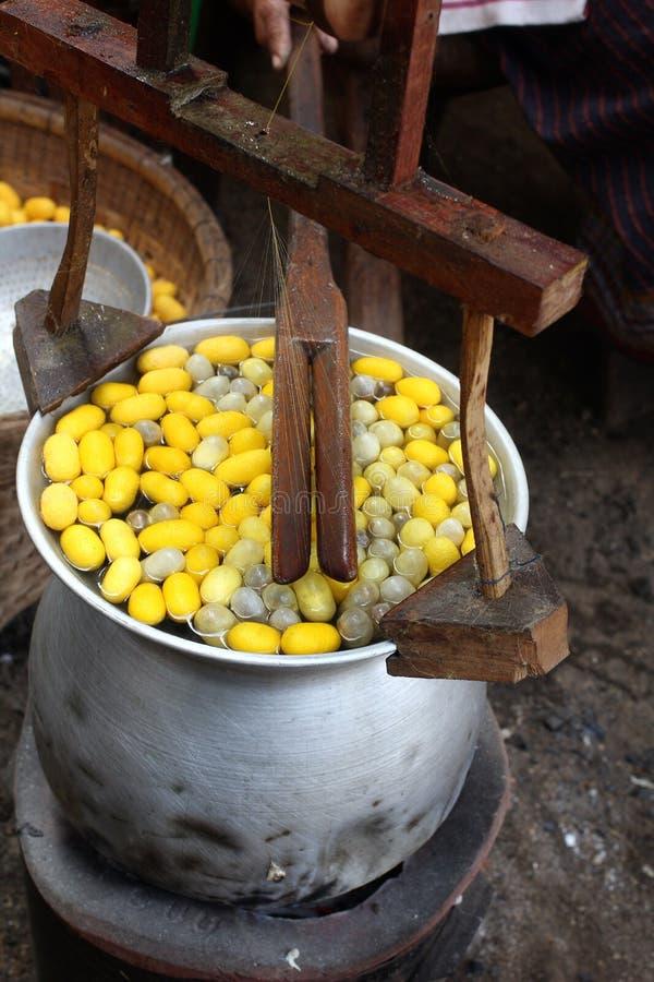 Ver à soie de cocon photo stock