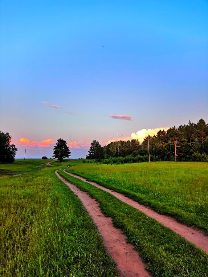 ?ver The Field en grusväg till och med fälten leder till skogen på en sommardag på solnedgången arkivbilder