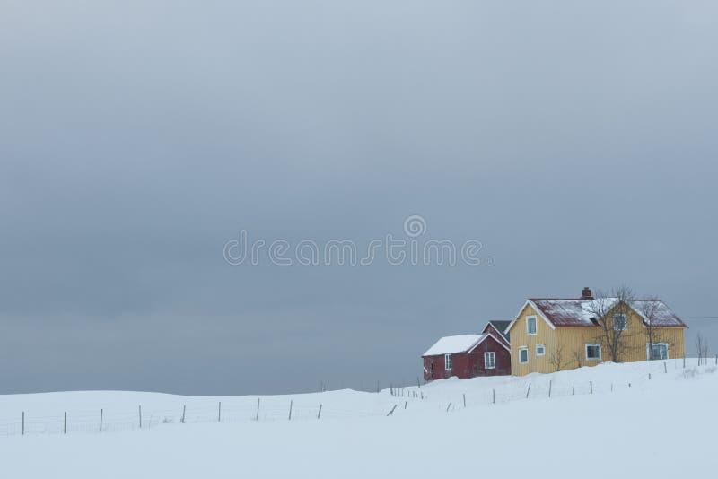 Ver huis in kustlandschap Flakstad Flakstadoya Loftofen Noorwegen royalty-vrije stock afbeelding