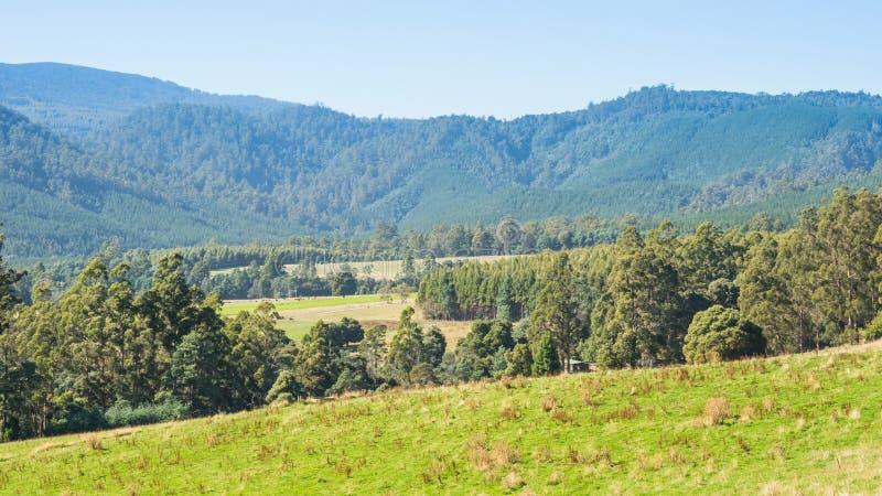 Ver na estrada Tasman imagem de stock