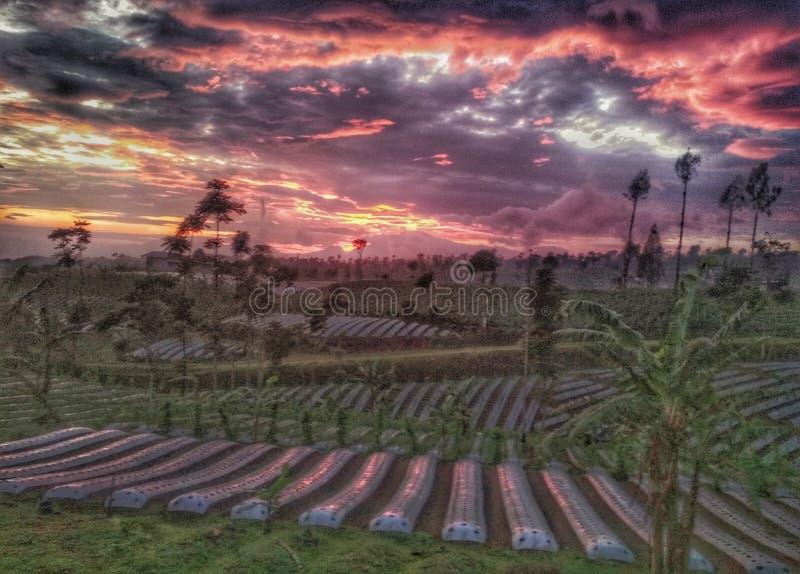 Ver a natureza indonésia com o nascer do sol em Temanggung Central Java Indonesia imagem de stock royalty free