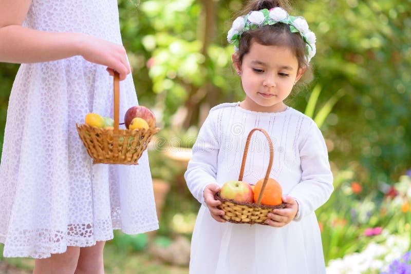 ver?o Duas meninas no vestido branco guardam uma cesta com fruto fresco no jardim shavuot outono da colheita imagem de stock royalty free