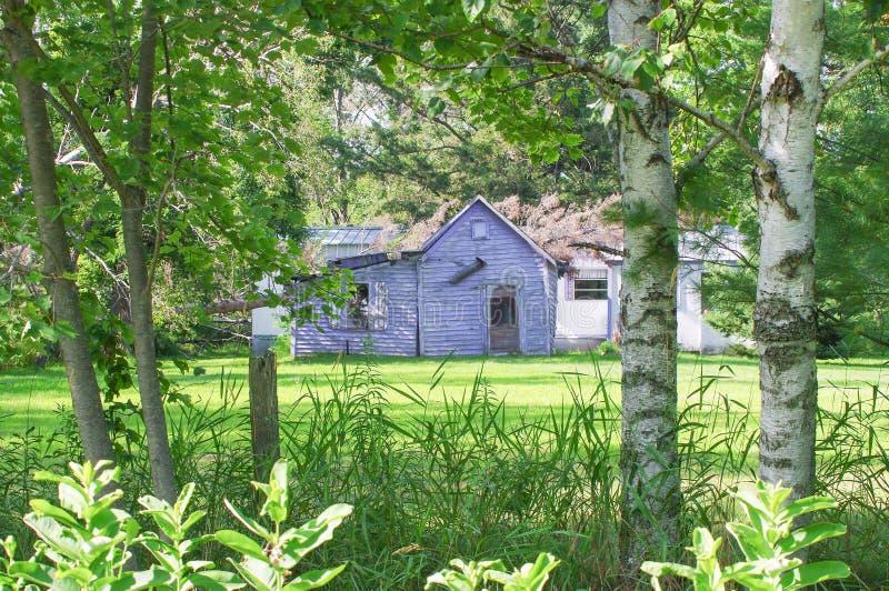 Ver verlaten en dilapidated huis in landelijk die Wisconsin door bomen wordt ontworpen stock foto's
